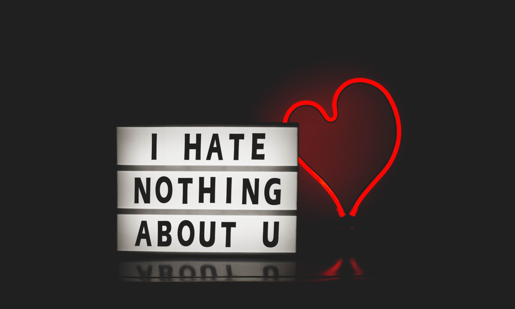 I hate nothing about you sign